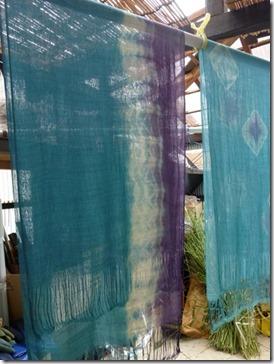 藍の生葉とウメノキゴケで草木染め