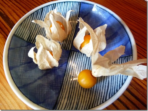 蔓ききょうの食用ほうずき(ほうずきトマト)
