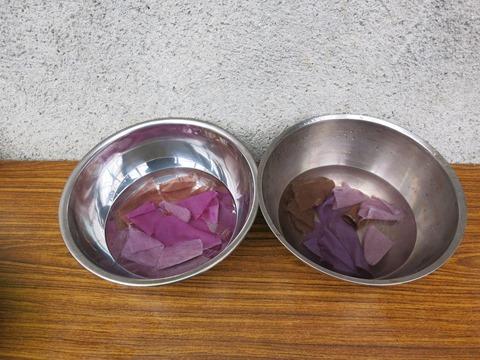 紫根で草木染め。酸性とアルカリ性で色が変化