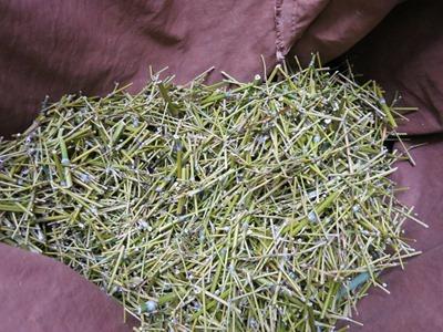 笹(竹)は草木染に使います。枝の部分も