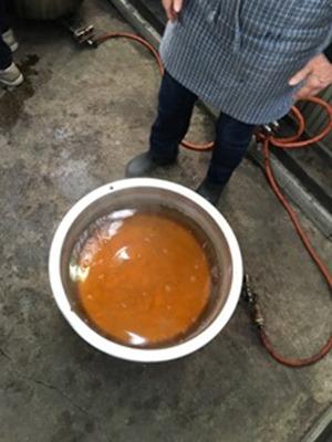 月桂樹、煮出した染液はオレンジ黄色