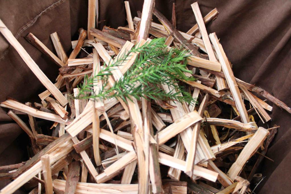 草木染 杉