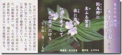 奈良・万葉植物園