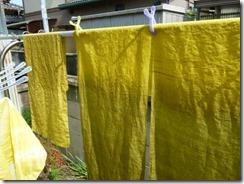 藤で草木染めすると黄色に。座布団用麻の布