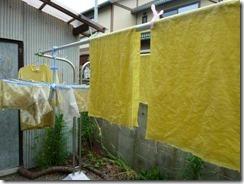 ドクダミで草木染めした布
