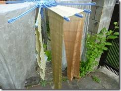 月桂樹と枇杷で草木染め