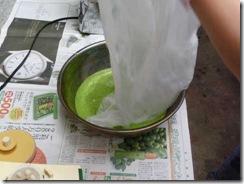 藍の生葉染めの方法5。そこにシルク素材を入れる