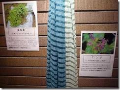 草木染したシルクストール、藍生葉(左)くさぎ(右)
