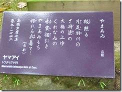 「山藍」奈良・万葉植物園