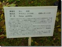 「なし」奈良・万葉植物園