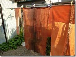 草木染教室はビワで染めました