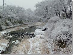 2011年2月14日の京都府井手町玉川堤の雪景色