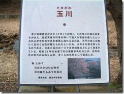 井手の玉川の銘板