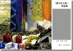 kyoshitsu20100403_nonohana_2