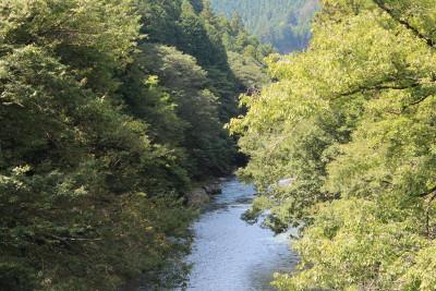 秋川渓谷の清流。ギャラリーのすぐ横です